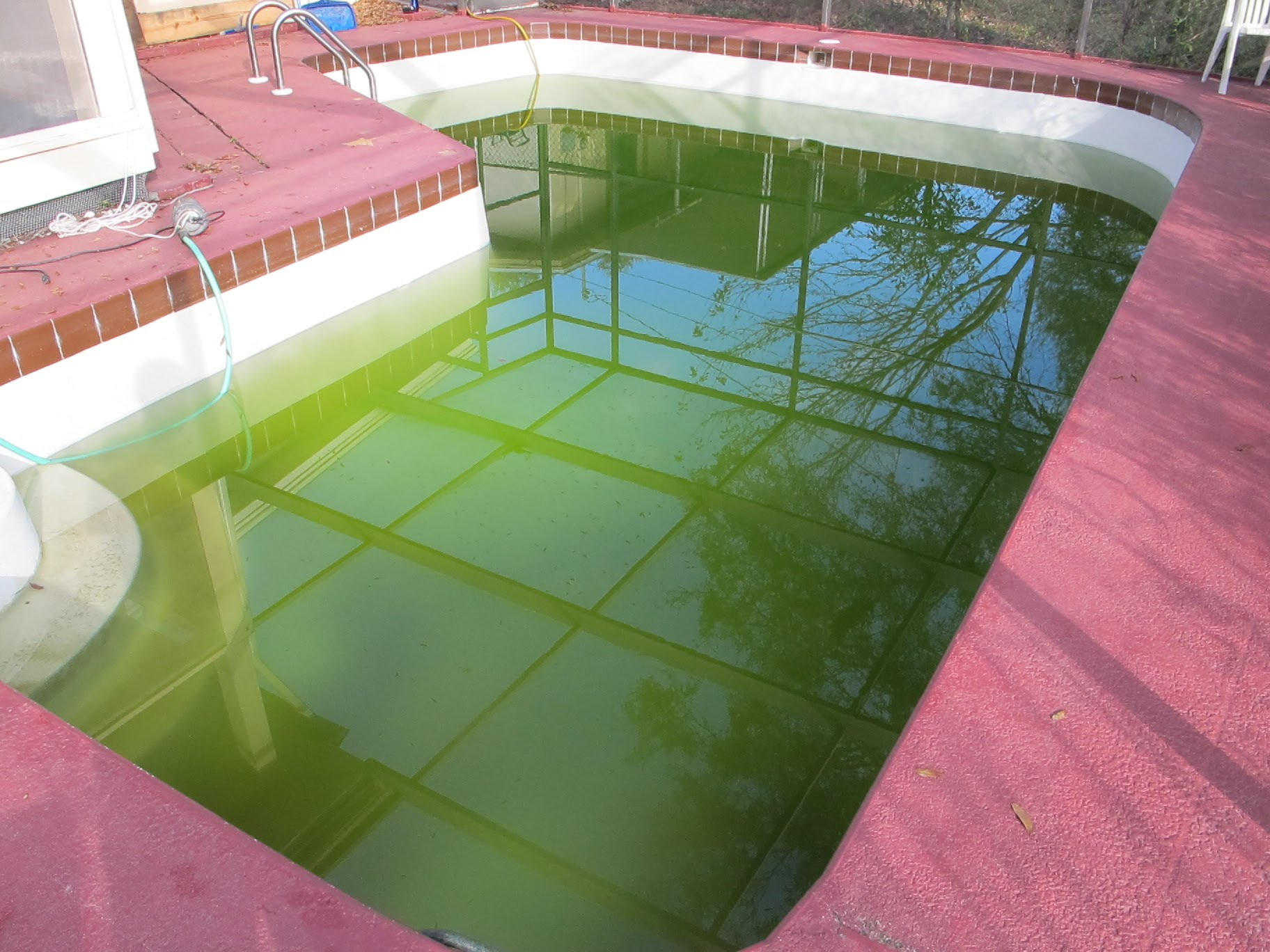 How To Clear Up Green Swimming Pool Water Pt. 1 - Amazin Walter
